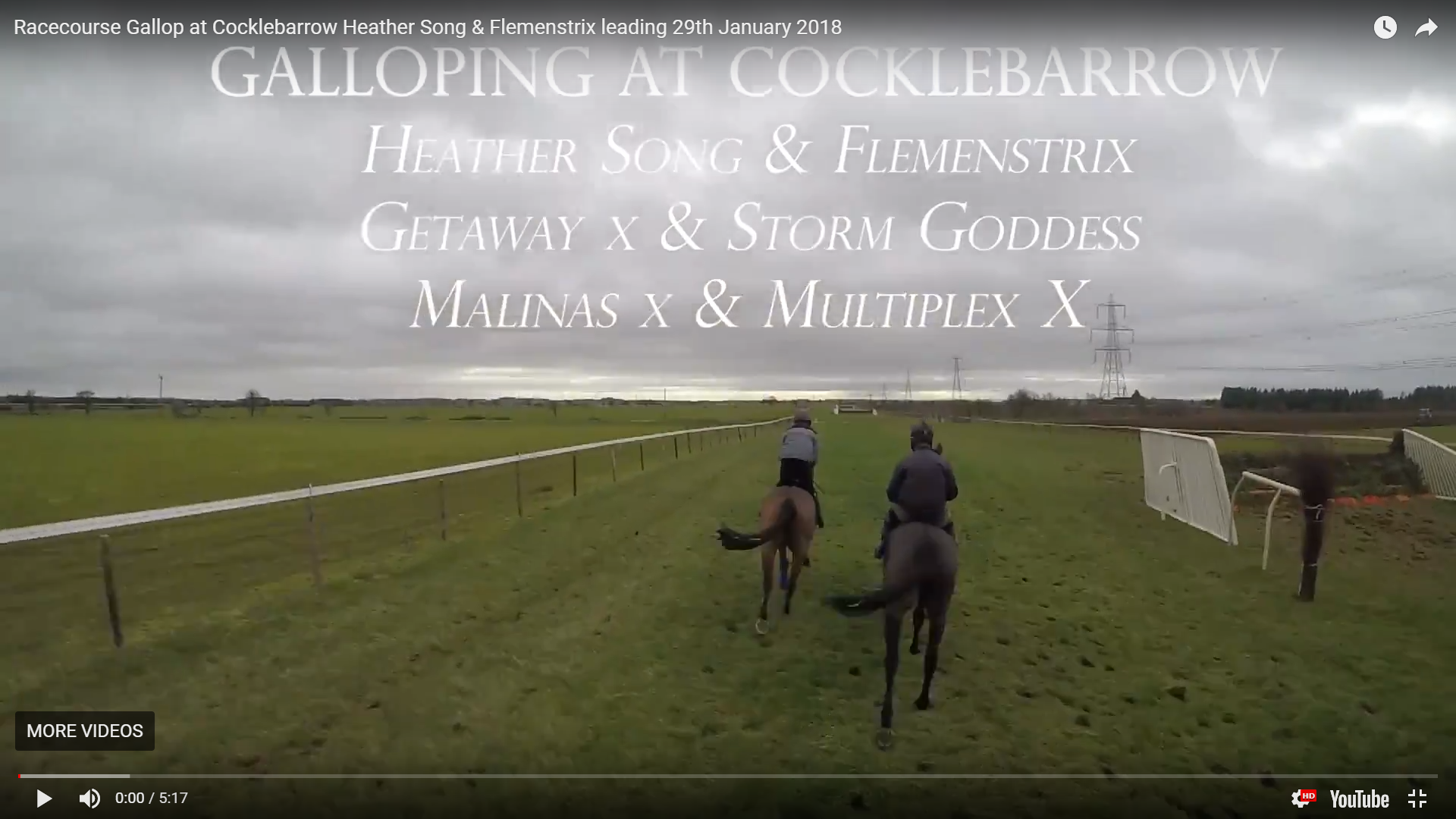 Racecourse Gallop at Cocklebarrow Heather Song & Flemenstrix leading 29th January 2018