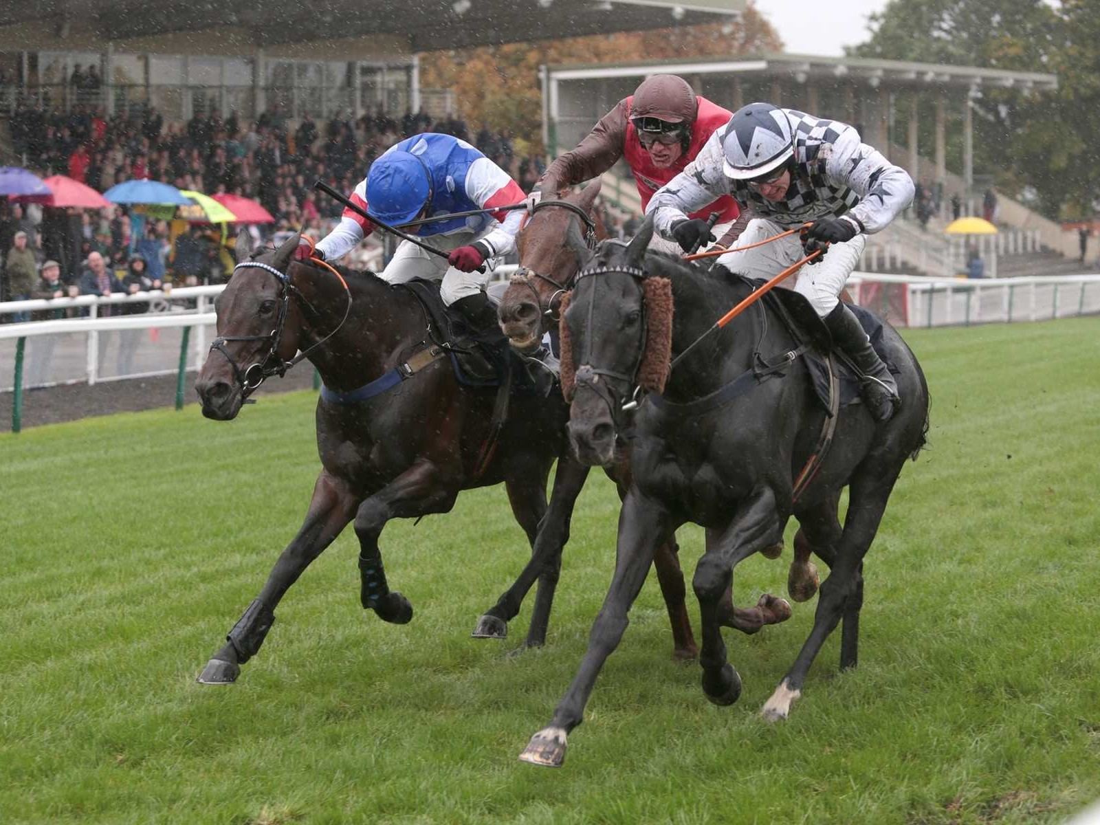 Vivas and Johnny Burke getting the better of a three-way fight at Fontwell