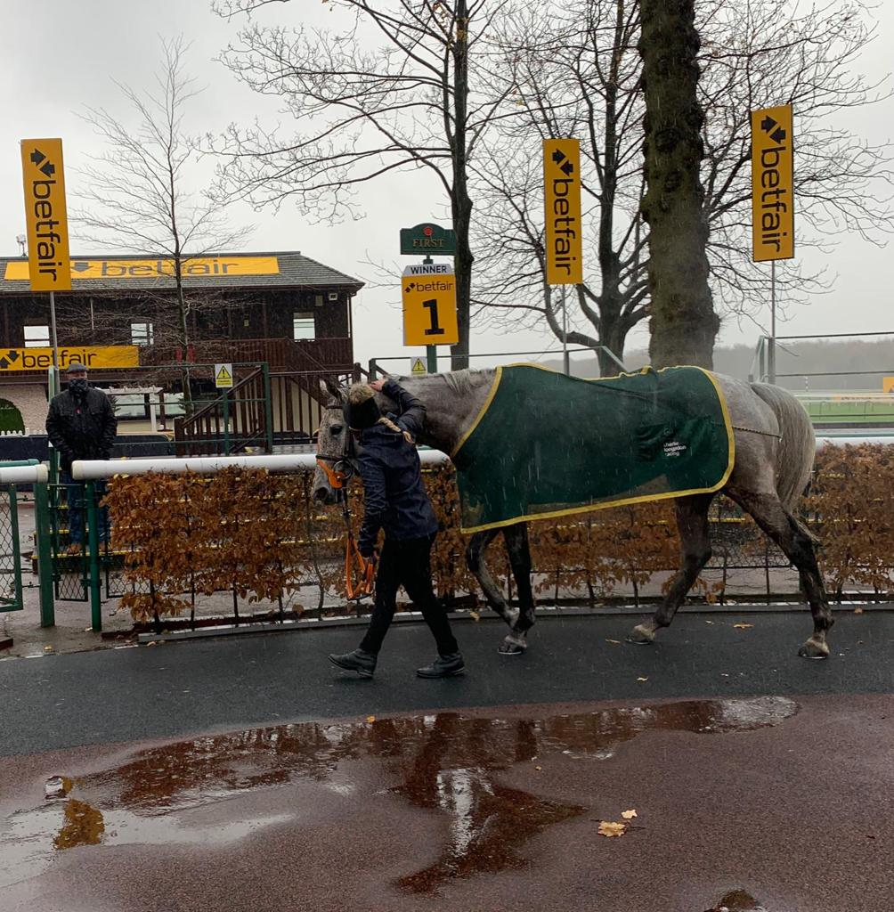 SNOW LEOPARDESS wins at Haydock