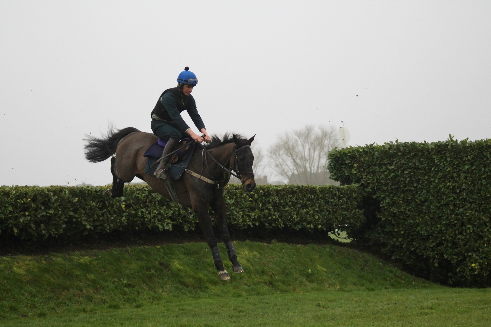 Vivas cross country schooling around Cheltenham before his debut!